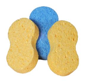 polish applicator sponges